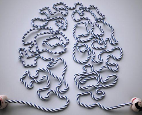 Comba que dibuja un cerebro para ilustrar página Neuroplasticidad y Fisioterapia Vestibular